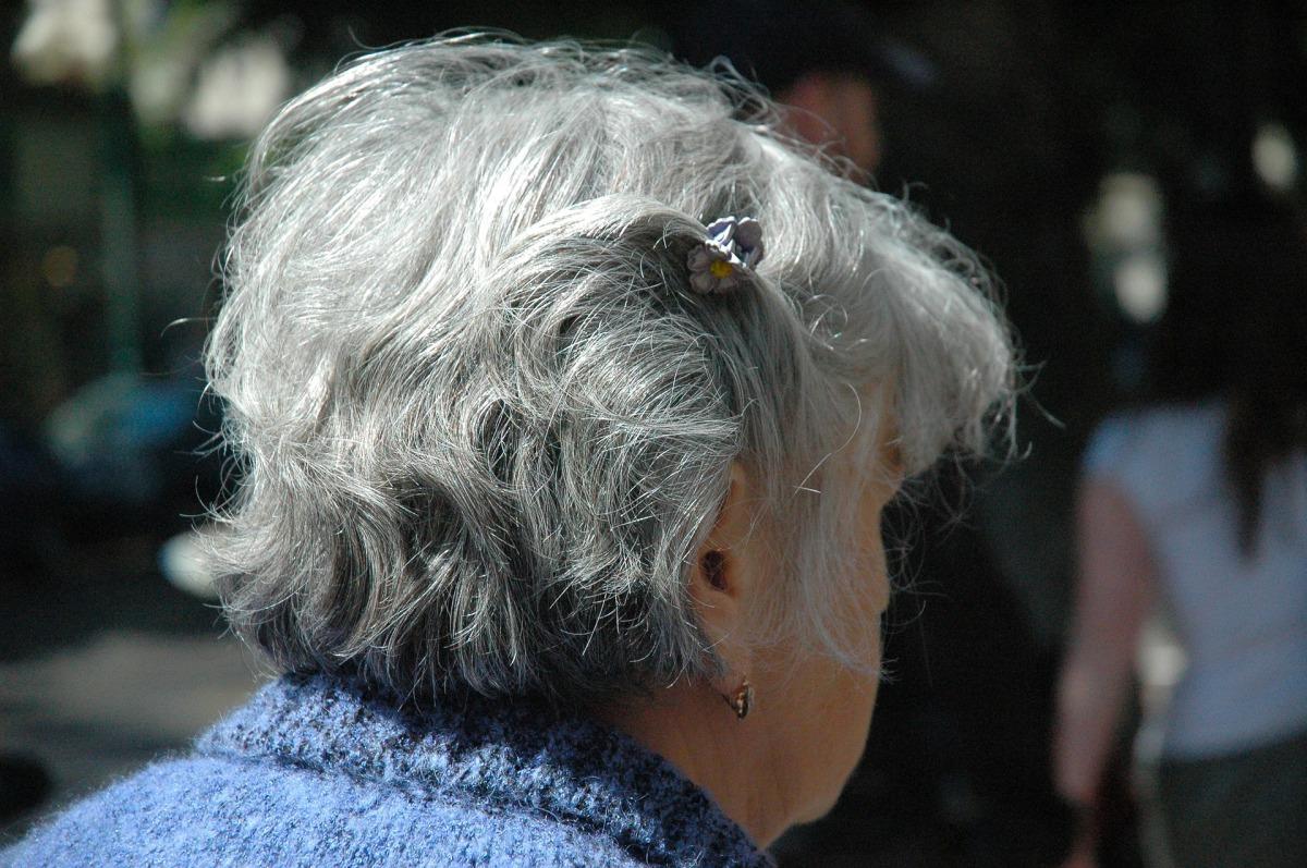 Benefício da Prestação Continuada(BPC da LOAS): não pode, nem deve ser confundido com aposentadoria